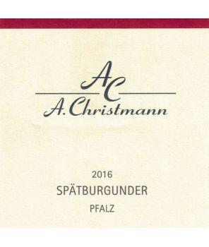 """Pfalz Spätburgunder"" (Pinot Noir) Trocken 2016 0,75l"